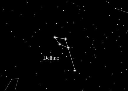 Costellazione Delfino