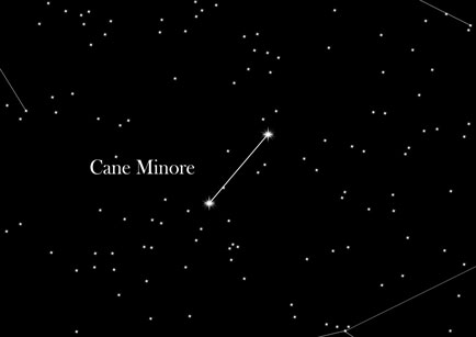Cane Minore