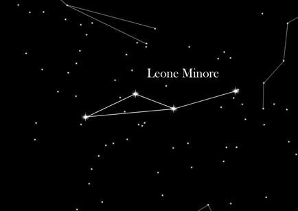 Leone Minore